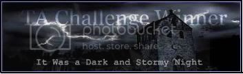 Dark and Stormy Night Banner Winner